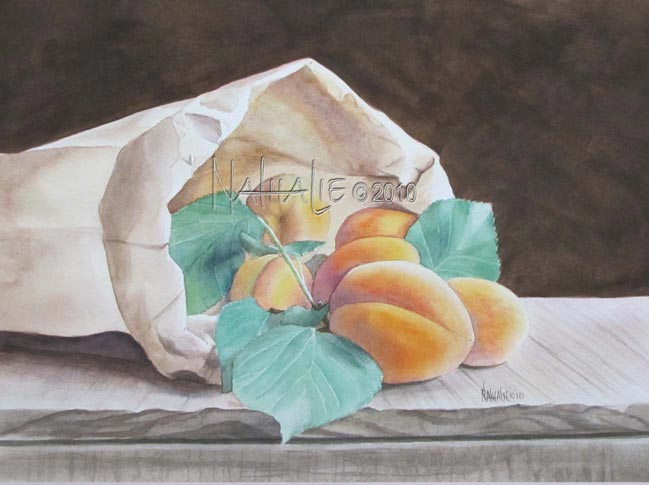 Apricots in Brown Paper Sack Nathalie Kelley Watercolor